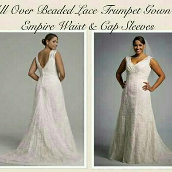 Plus Size Wedding Dress NWT